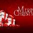Írásban gazdag, kellemes ünnepeket kívánunk!