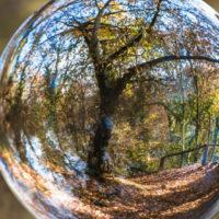 Emmerich Palmer: Lélekfa – Ébredők (részlet)