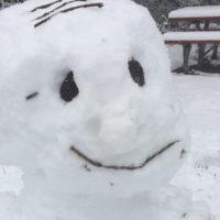 Sipos-Agg Csilla: Hó-vár-őr