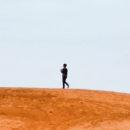 Emmerich Palmer: Aratás a halott földeken (részlet)
